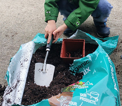 Earth Day Vs. Arbor Day - History & Ways to Celebrate - Plant Something Small