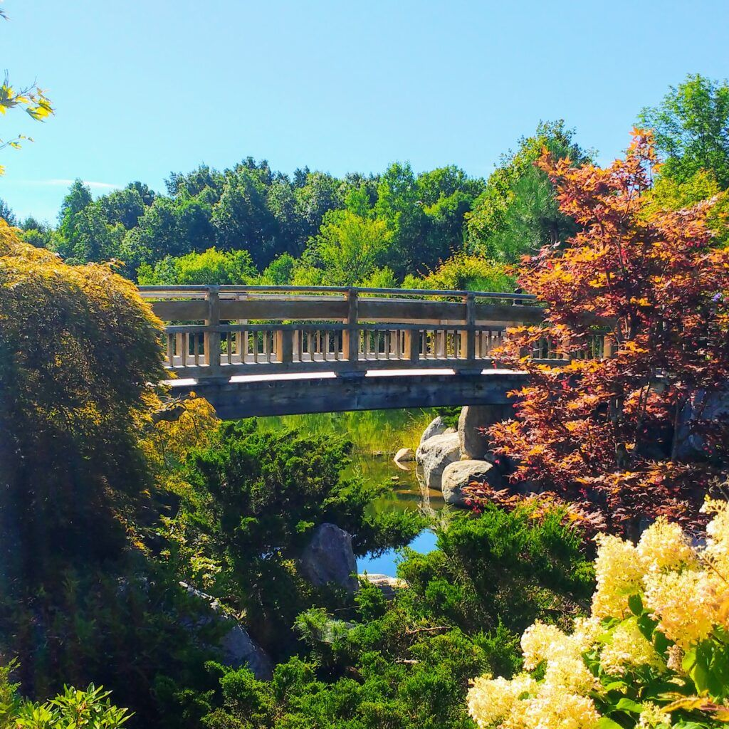 Frederik Meijer Gardens (Grand Rapids, MI) Family Guide - Best Kid-Friendly Spots - Japanese Garden