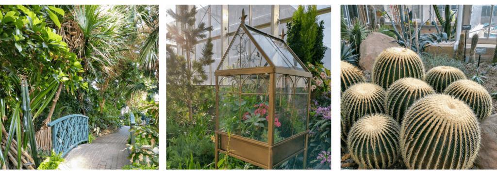 Frederik Meijer Gardens (Grand Rapids, MI) Family Guide - Best Kid-Friendly Spots - Indoor Gardens