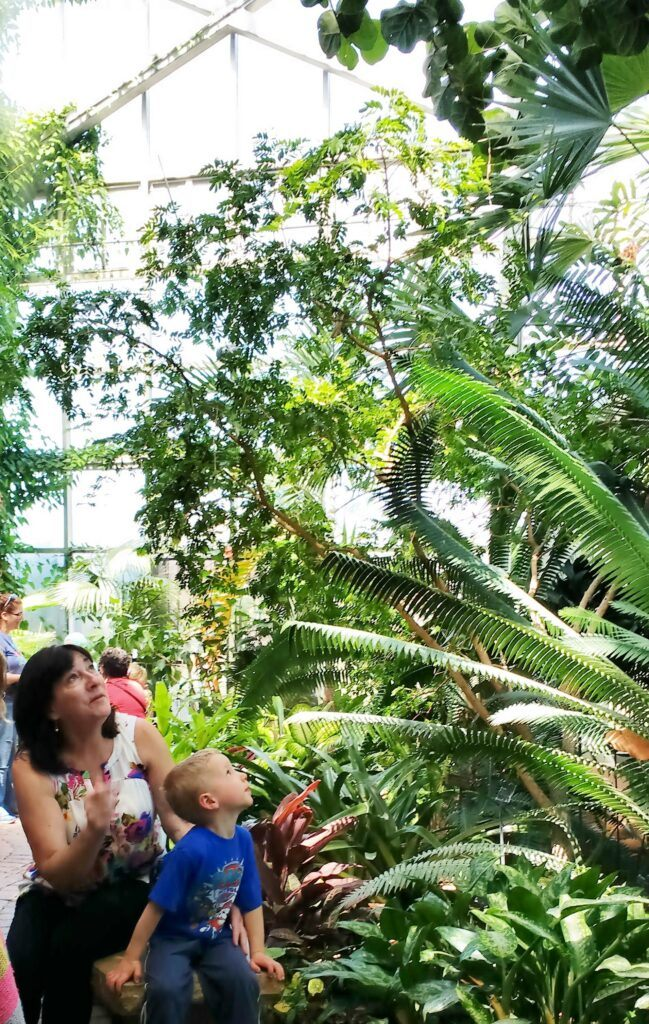Frederik Meijer Gardens (Grand Rapids, MI) Family Guide - Best Kid-Friendly Spots - Tropical Conservatory
