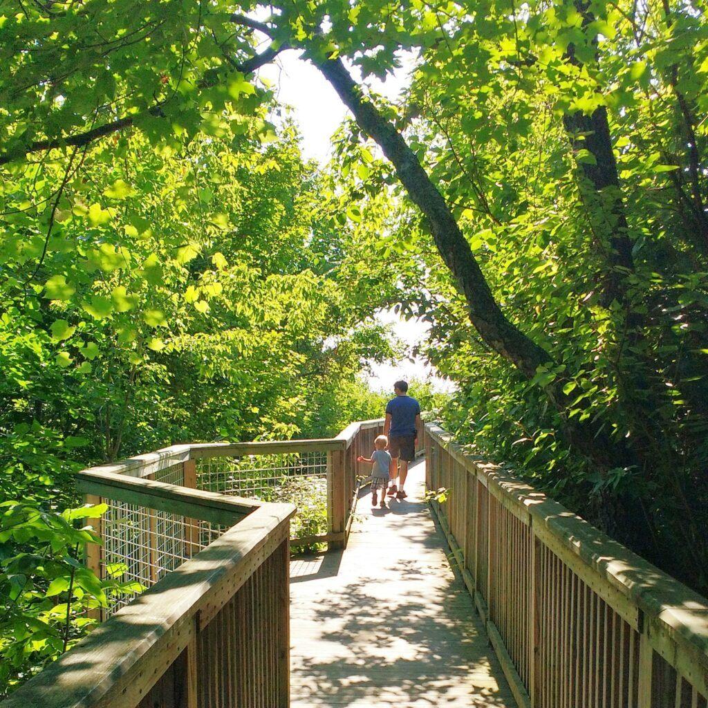 Hike West Michigan: Best Ottawa County Trails - Mt. Pisgah Dune Boardwalk