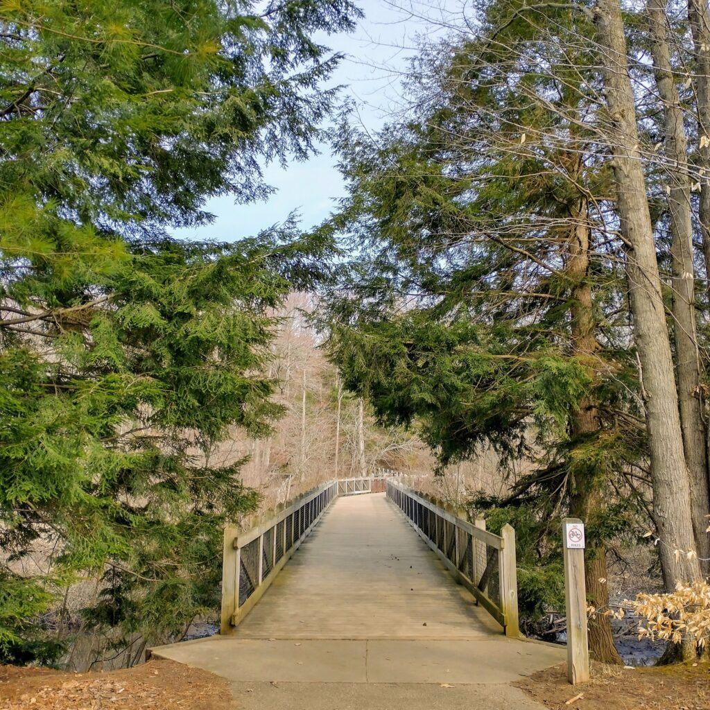 Hike West Michigan: Best Ottawa County Trails - Hemlock Crossing