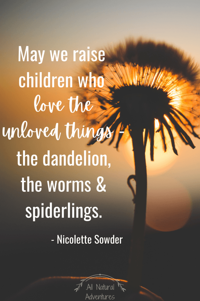 Fun Dandelion Facts For Kids - Children's Nature Quotes