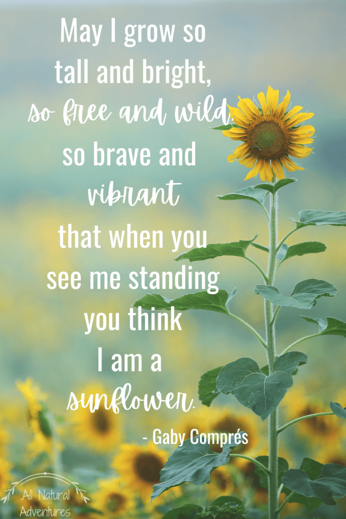 Children's Nature Quotes To Inspire Any Outdoor Adventure With Kids - Building Confidence - Gaby Compres