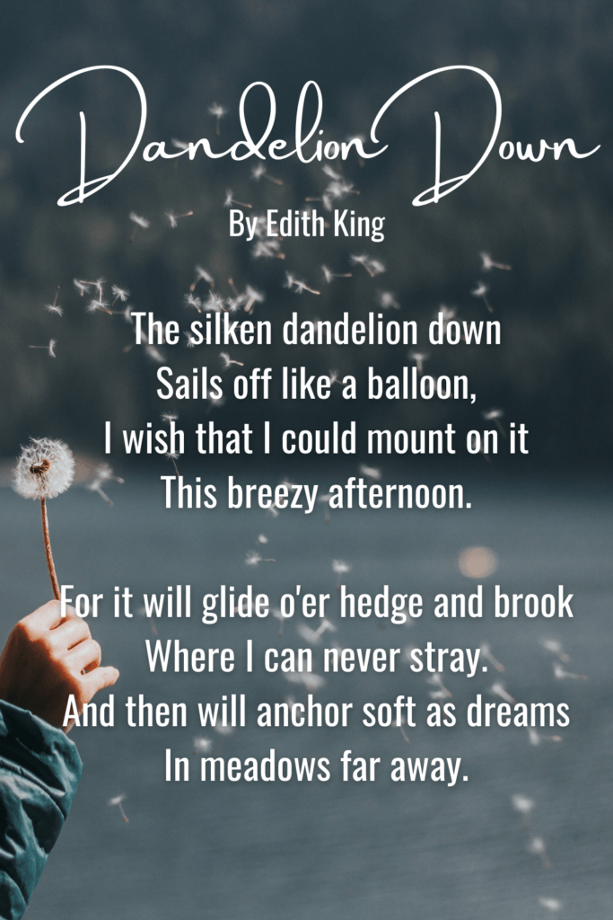 Short & Sweet Nature Poems For Children - Dandelion Down By Edith King