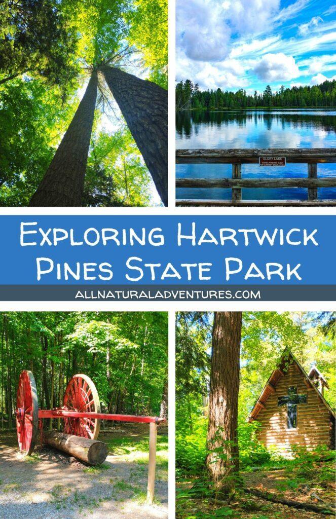 Exploring Hartwick Pines State Park In Grayling, Michigan