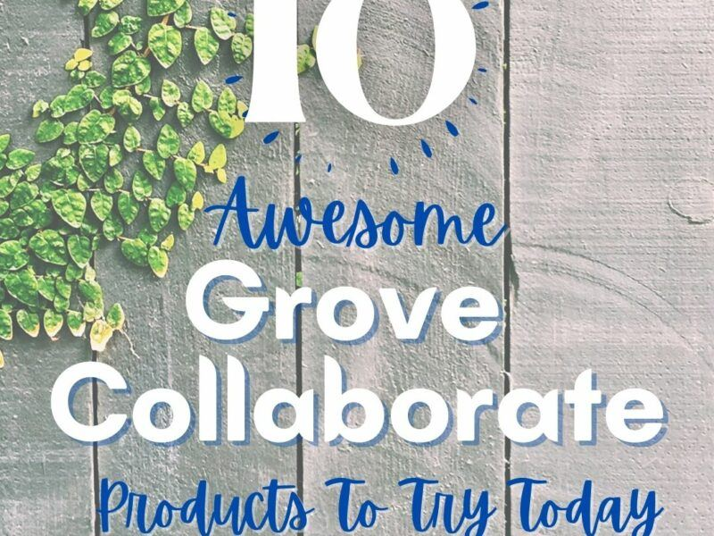 10 Best Grove Collaborative Products To Try Today