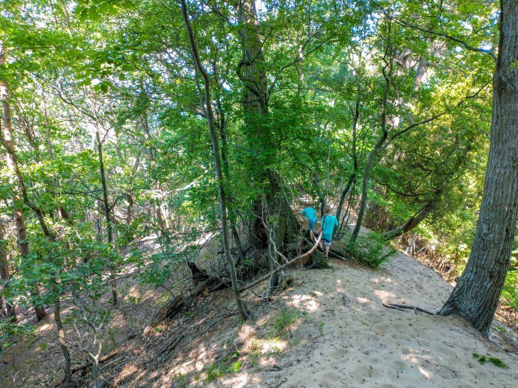 3 Must See Spectacular Hikes In Saugatuck, Michigan - Mt. Baldhead